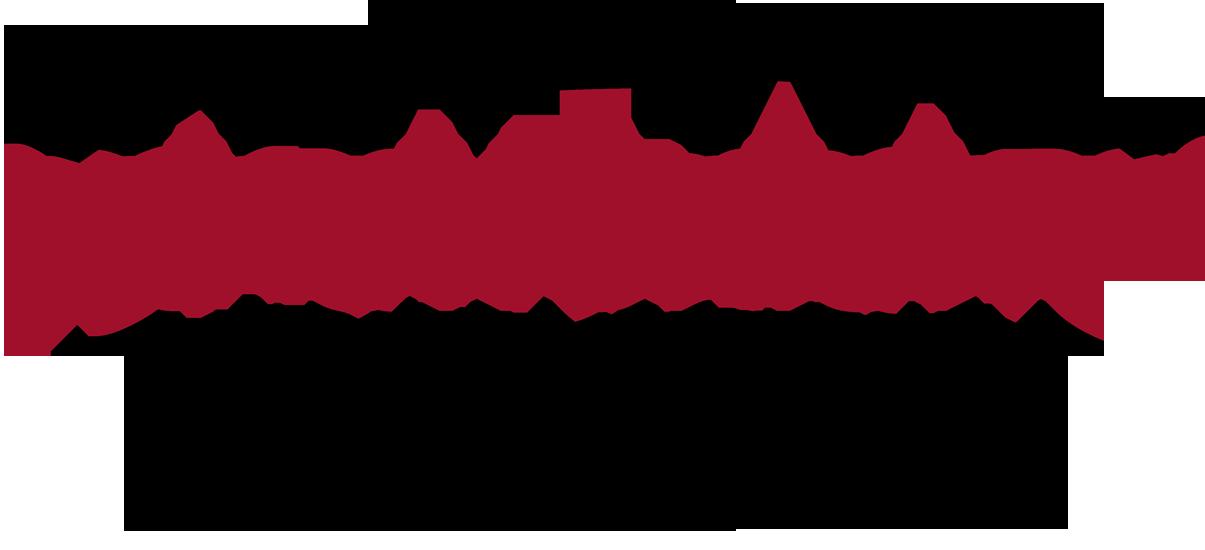 schottenloher | Understanding markets-consulting people
